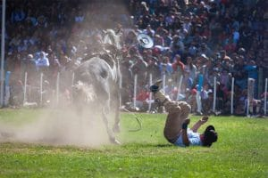 Rodeo and Stock show blog San Antonio Injury Lawyer at the Reyna Law Firm